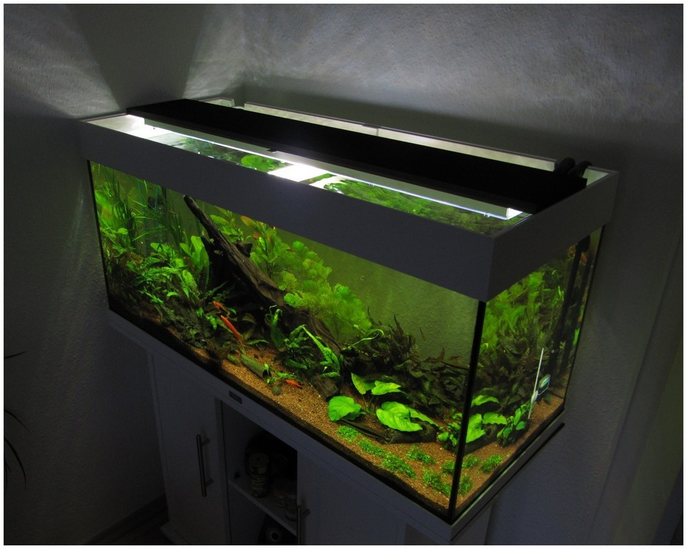 aquarium led beleuchtung selber bauen 2011 haus ideen. Black Bedroom Furniture Sets. Home Design Ideas
