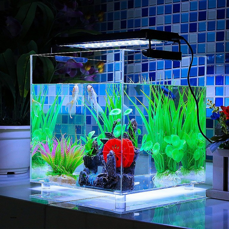 aquarium beleuchtung wie lange haus ideen. Black Bedroom Furniture Sets. Home Design Ideas